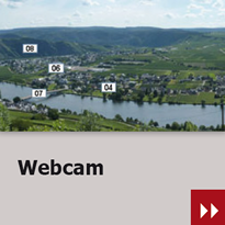 Webcam in Piesport an der Mosel